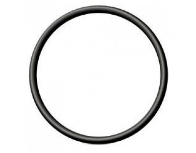Tri Clamp O Ring 2""