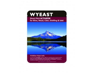 Wyeast 4267 - Summation Red
