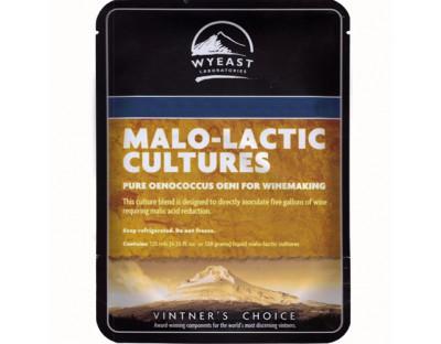 Wyeast 4007 - MaloLactic Culture